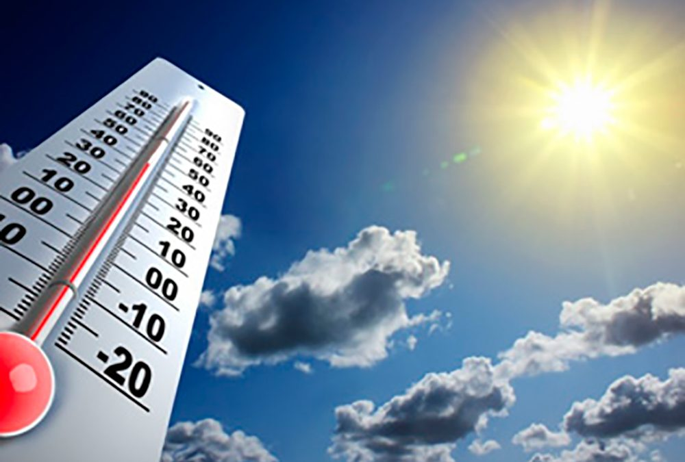 Heatstroke: how to prevent it during the summer months